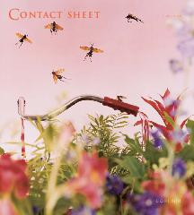 Contact Sheet 119