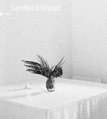 Contact Sheet 196